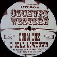 Boom Box – D Cell Lowdown